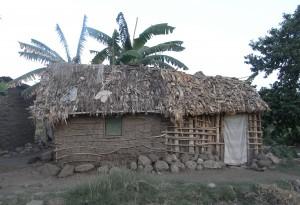 tanzania house